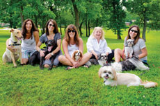 From left: Joy Freedman, Jane Sopher, Lisa Poland, Linda Turkel and Robin Frank snuggle with their rescued dogs on a recent visit to the park. (David Stuck)