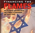 112913_Financing-The-Flames-sm