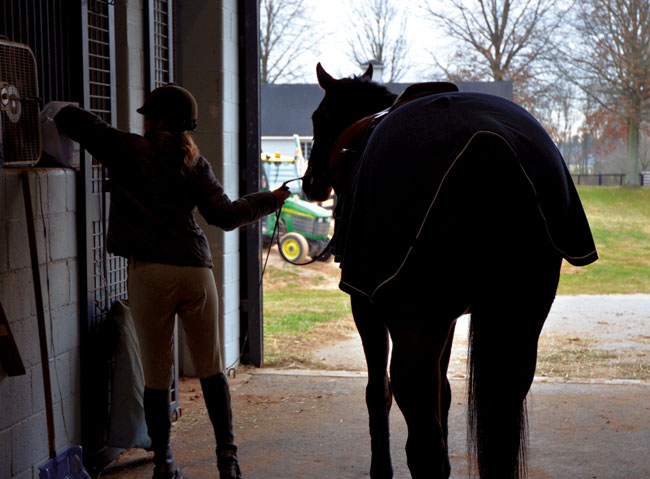 "9:02 a.m.  ""This is his third career,"" says Lauren Reck of 12-year-old Expletive. Ex, for short, is an off-the-track thoroughbred and was a steeplechase racehorse but now is a show-jumper boarded at Helmore Farms. Reck rides Ex at least twice a week. ""He's great to ride, and he's a good jumper — well-bred, brave, athletic; he takes care of me,"" says Reck, who has been riding horses since age 4. Reck is a Southern Jersey girl but has been a ""native"" Baltimorean for more than 20 years. ""He's named Expletive because he's kind of a pain. No one else could put up with him. He comes by his name honestly."""