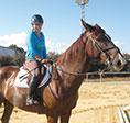 053014_equestrian-sm