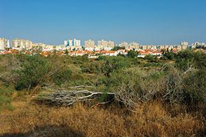 080114_ashkelon