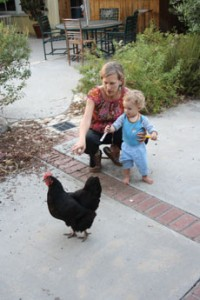 Devorah Brous and her son play with one of their chickens. Brous always begins her workshops with relevant readings from the Torah. (Anthony Weiss)