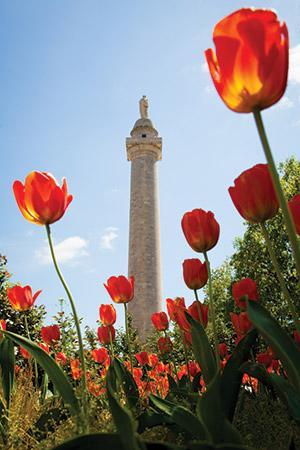 Washington Monument (Photo by Justin Tsucalas)