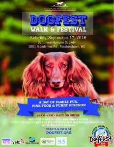 Flier-Dogfest-2016 front