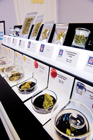 Different strains of medical cannabis at a Washington, D.C., dispensary. (Photo by David Stuck)