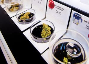 cannabisRotator