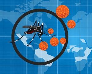 (Frankel: Courtesy of Facebook;Zika: ©iStockphoto.com/bakhtiar_zein)