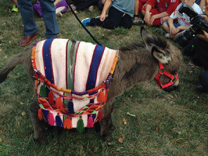 The Beirig family's donkey was adorned with a serape and jewelry on its walk to the podium. (Lori Samlin Miller)