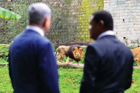Israeli Prime Minister Benjamin Netanyahu and Ethiopian President Mulatu Teshome watch lions at the presidential compound in Addis Ababa, Ethiopia, in July. (Kobi Gideon/GPO)