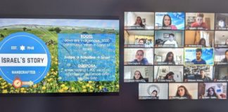 StandWithUs Conferences were held via Zoom (Screenshot by Kutner)