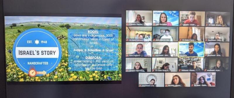 StandWithUs Conferences were held via Zoom (Screenshot by Kutner)