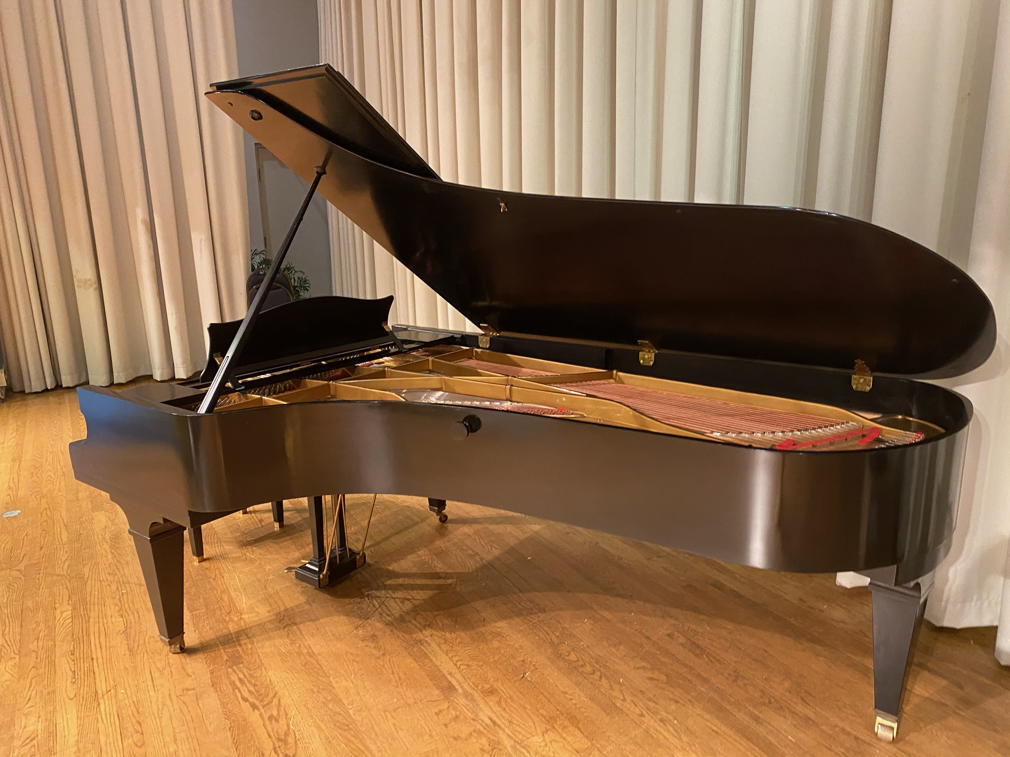 Beth El's bechstein piano (Courtesy of Ellen Marks)