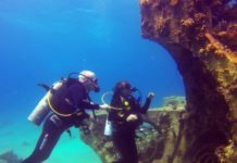 Paul Driessen and Nadav Shashar scuba dive