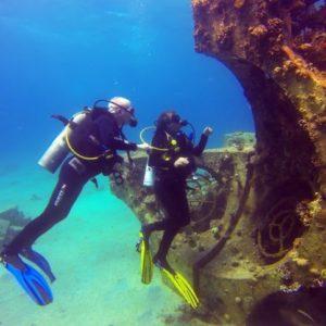 Paul Driessen and Nadav Shashar scuba dive