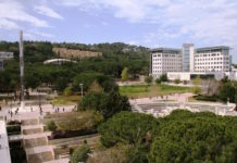 The Technion-Israel Institute of Technology