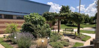 Oseh Shalom's biblical garden