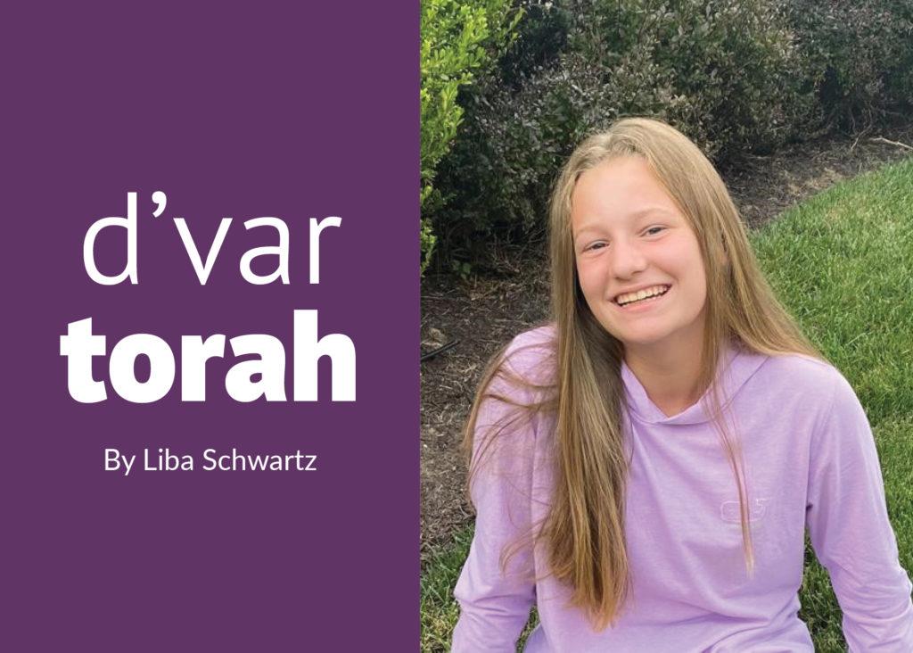 Liba Schwartz