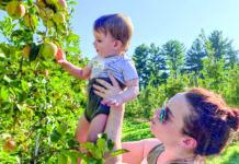 Elizabeth Kern and her son, Sam, pick apples